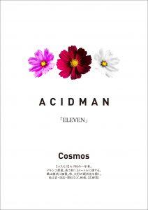 【ACIDMAN】ELEVEN特典_コスモスの種2